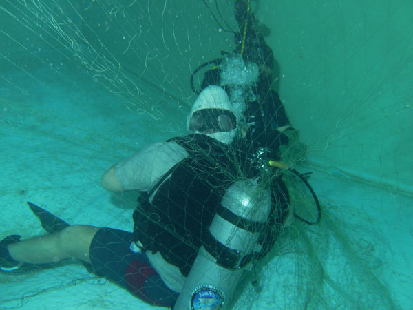 Dive Training - Diver in Net